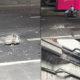 กรี๊ด เศษแท่งปูนBTSอารีย์หล่นกลางถนน บุญรักษาไม่โดนหัวใครตาย | Tadoo