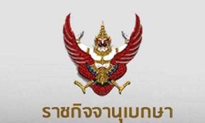คนไทยเฮ ขยายเวลายื่นเสียภาษีบุคคลธรรมดาผ่านอินเทอร์เน็ต ถึง 31 ส.ค.   Tadoo