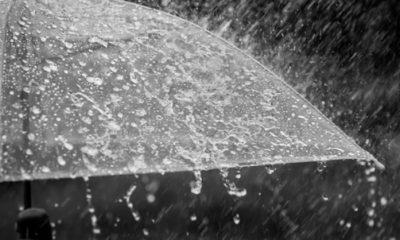 50 จังหวัดยังเจอฝนหนัก ! กรมอุตุฯ พยากรณ์อากาศทั่วไทย 18-19 มิ.ย. | Tadoo