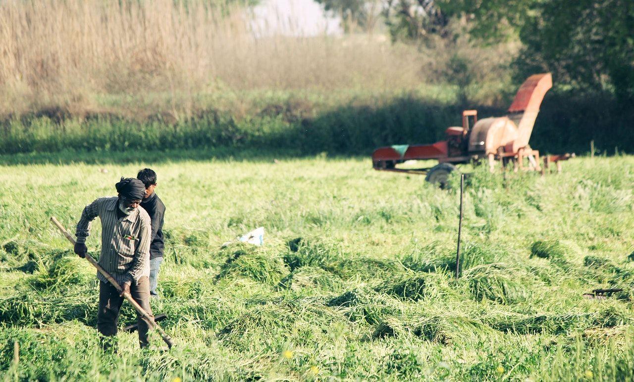 เช็กสถานะเยียวยาเกษตรกร 18 มิ.ย. โอนอีก 1 ล้านราย เช็กเงินเข้าเลย | Tadoo