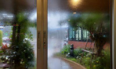 พยากรณ์อากาศวันนี้ ฝนตกชุ่มฉ่ำทั่วประเทศ ภาคใต้-ตะวันออกฝนตกหนัก | Tadoo