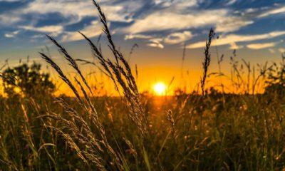 เช็กวันที่ด่วน! กำหนดโอนเงินเยียวยาเกษตรกรรอบ 2 เช็กสิทธิ์ใน www.เยียวยาเกษตรกร.com | Tadoo